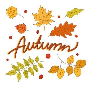 秋のタイポグラフィ手描き