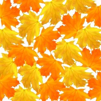 ショッピングセールバナーポスターのカエデオレンジと黄色の葉と秋のベクトルの背景