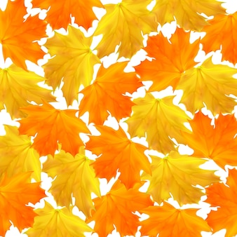 Autumn vector background with maple orange and yellow leaves for shopping sale banner poster