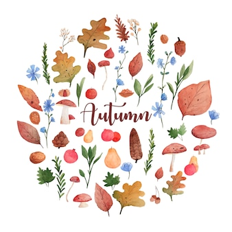 Autumn watercolor elements