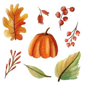 秋の水彩画の葉と植物