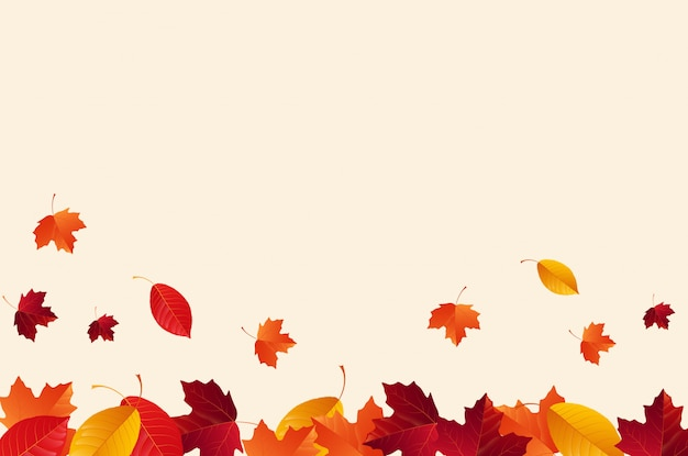 Autumn with falling autumn leaves