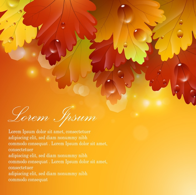 Autumnal abstract background  with bright beautiful leaves