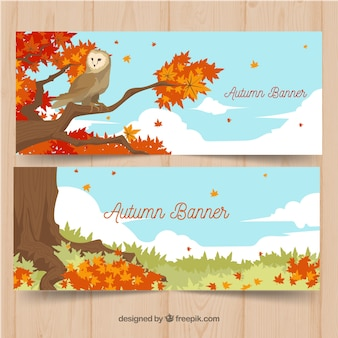 Autumnal banners with landscape and owl
