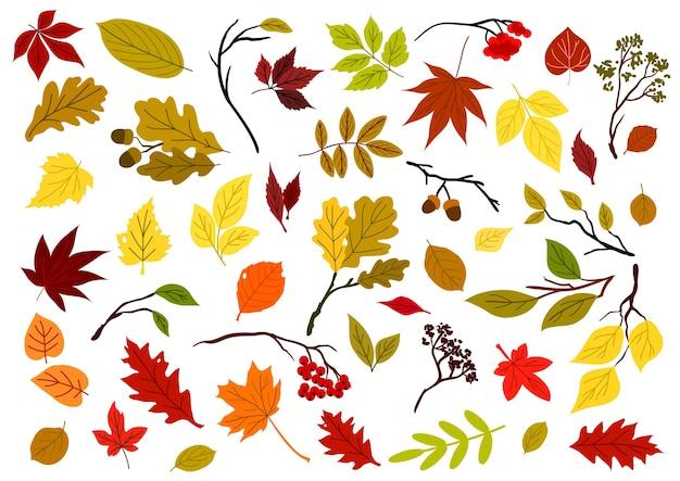 Осенний красочный красный