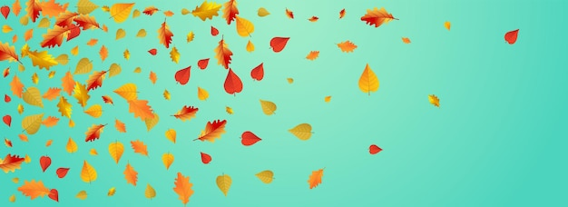 Autumnal foliage vector blue panoramic background. nature leaves illustration. golden november floral texture. ground card.