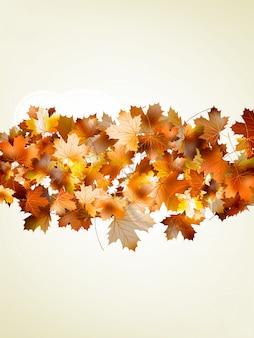 Осенний лист клена и солнечного света.
