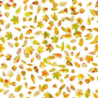 오색 완벽 한 배경입니다. 떨어진 잎사귀들.