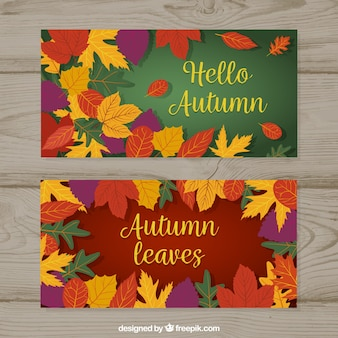 Autumnal set of banners with colorful leaves
