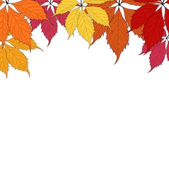 Autunm leaves on white background  illustration