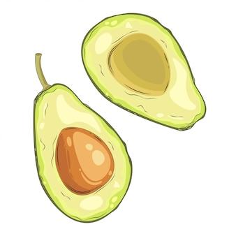 Avocado fruit cut in half.