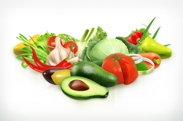 Avocado, harvest juicy and ripe vegetables vector illustration