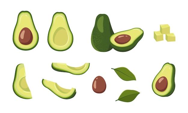 Avocado icons set bright green whole fruit  half slices with a large seed