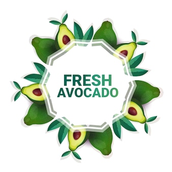 Avocado vegetable colorful circle copy space organic over white pattern background healthy lifestyle or diet concept