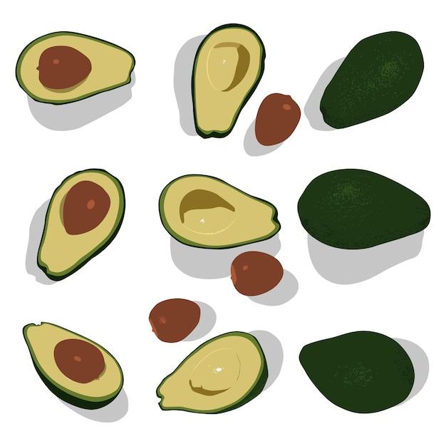 Avocado whole and half cartoon set isolated on a white background.