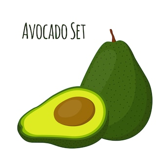 Avocado whole and slice
