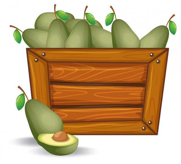 Avocado on the wooden board