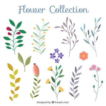 Awesome set of flat flowers