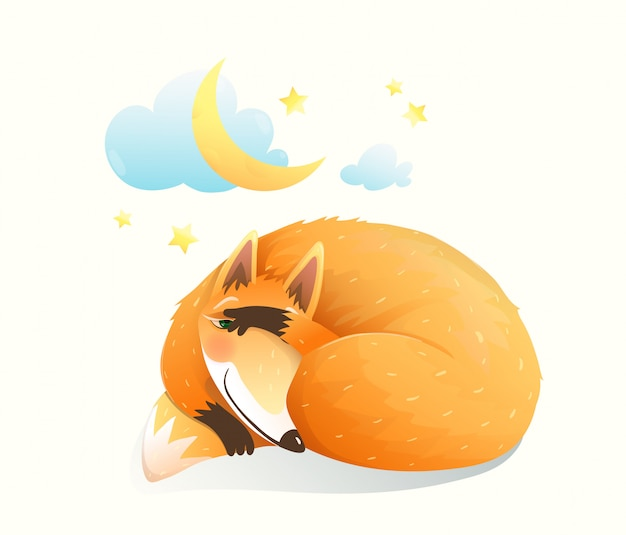 Baby animal fox sleeping at night under the stars and moon. cute clipart for newborn children.