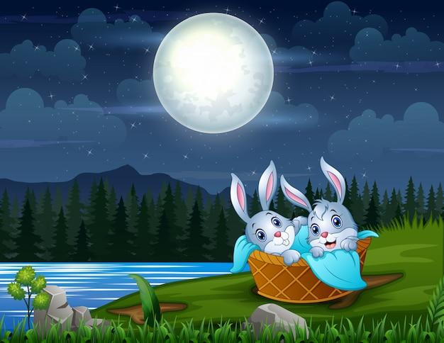 夜の川のそばのバスケットの赤ちゃんウサギ