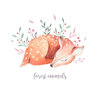 Baby deer character vector. hand drawn cute fawn watercolor forest animal.