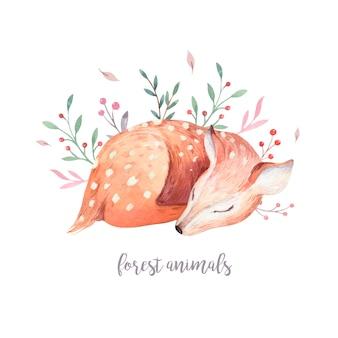 아기 사슴 문자 벡터. 손으로 그린 귀여운 엷은 수채화 숲 동물.