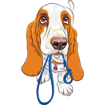 Baby dog basset hound breed