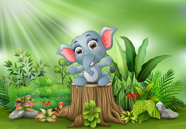 Baby elephant sitting on tree stump with green plants