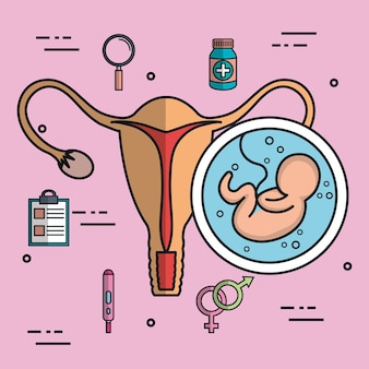 Baby fetus uterus icon flat isolated on pink background