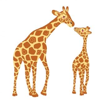 Ребенок жираф и взрослый жираф.