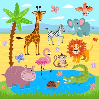 Baby jungle and safari zoo animals nature background