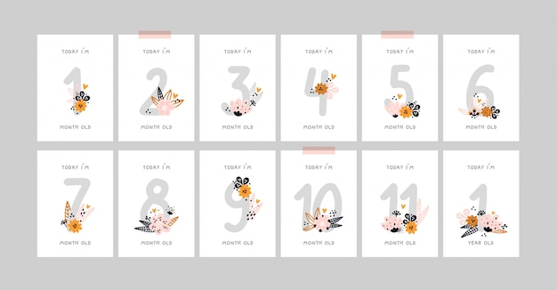 Baby milestone cards with flowers and numbers for newborn girl or boy. baby shower print