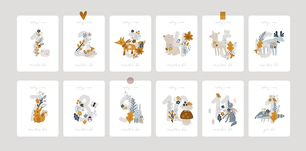 Baby milestone cards with flowers and numbers for newborn girl or boy baby shower print