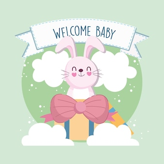 Baby shower bunny