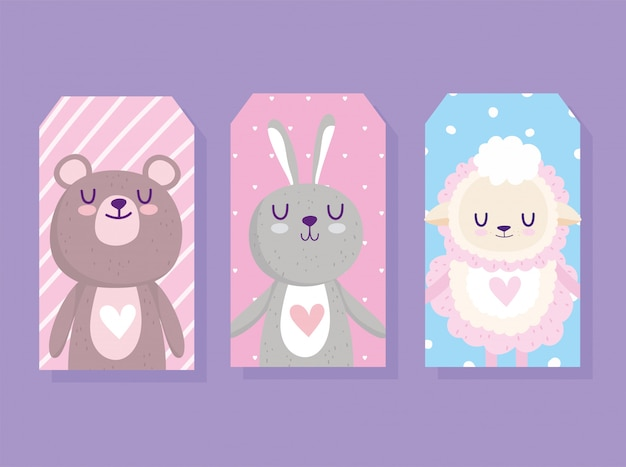 Baby shower, cute little sheep bear and rabbit animals cards cartoon