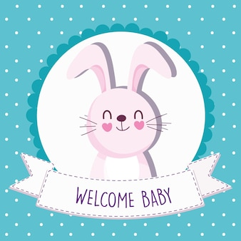 Baby shower rabbit