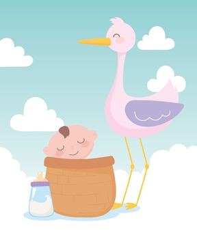 Baby shower, stork and little boy in basket, celebration welcome newborn