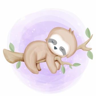ツリーの赤ちゃんナマケモノ