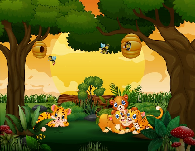 Baby tigers and lions playing in the wood