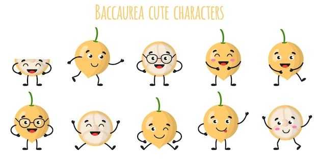 Baccaurea fruit cute funny cheerful characters with different poses and emotions. natural vitamin antioxidant detox food collection.   cartoon isolated illustration.