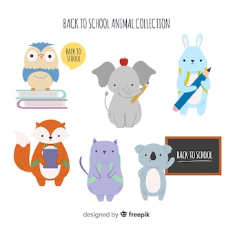 Back to school animal collection with bird