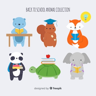 Back to school animal collection with panda
