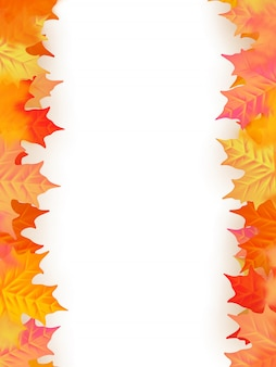Back to school template. autumn background with leaves.