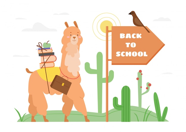 Back to school text motivation concept  illustration. cartoon  cute happy llama or alpaca animal character with schoolbag and stack of books or textbooks going to study  on white