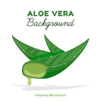 Background of aloe vera leaves