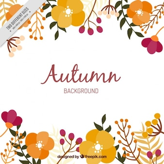 Background of autumnal flowers