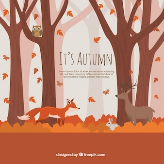 Background of autumnal forest with lovely animals