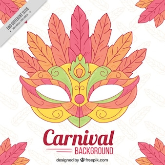 Background of beautiful mask with hand drawn feathers