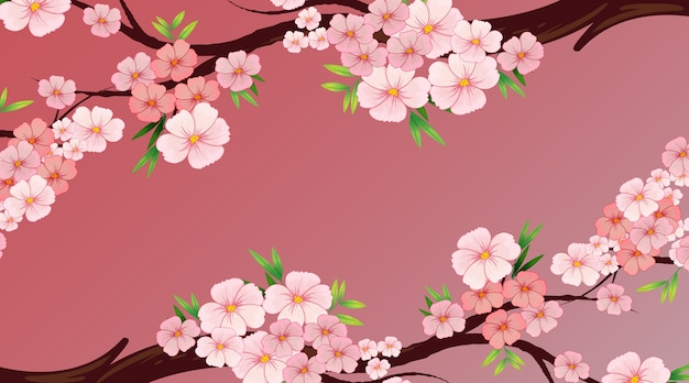 Background design template with pink flower or sakura on the tree