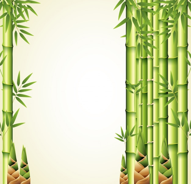 Background design with bamboo stems